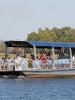 Yellow Water Cruises (Австралия)