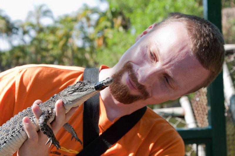 хороший крокодильчик
