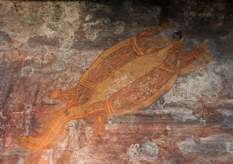 петроглифы аборигенов