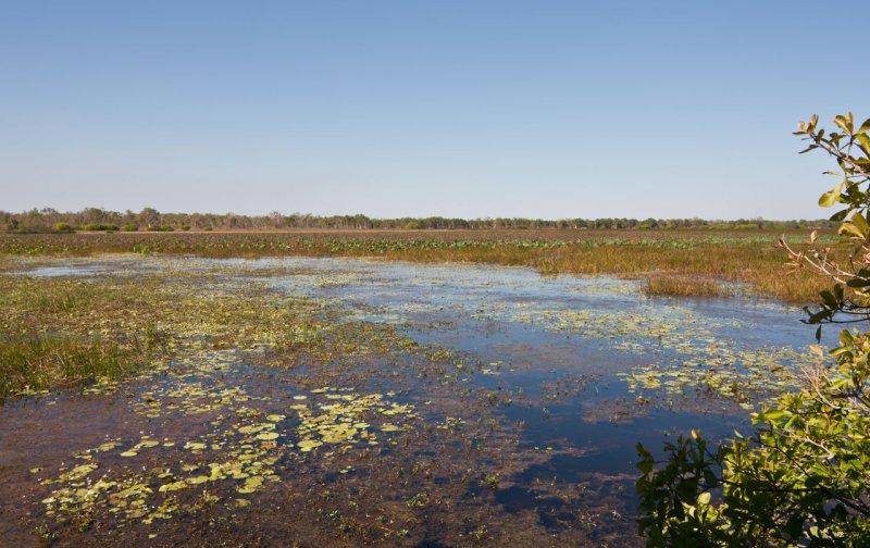 Mamukala wetlands (Australia)