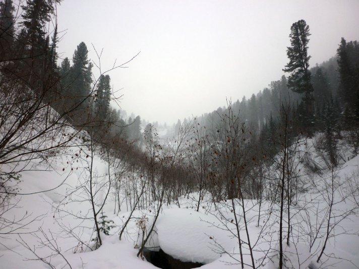 долина ручья по пути на г. Этель