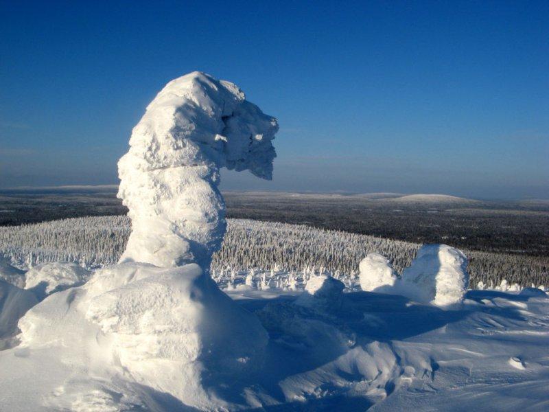 Снежный конь