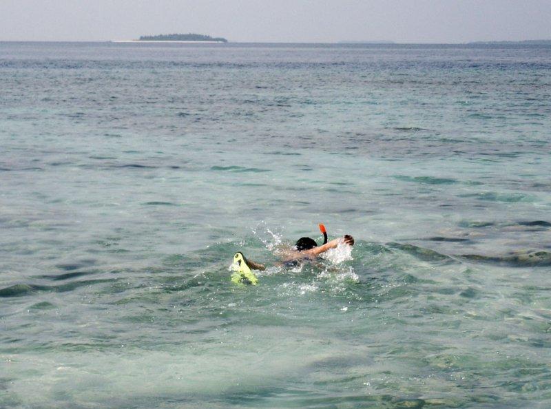 Сноркелинг на Мальдивских островах