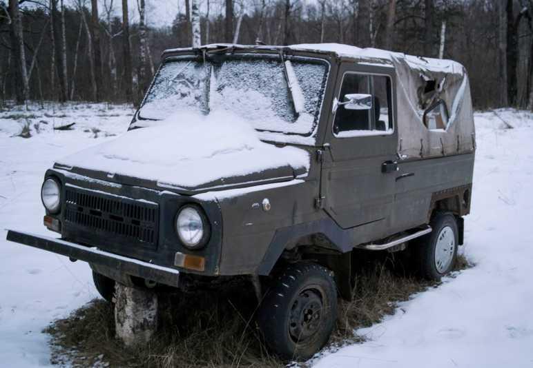 Кордон в Мещёрском крае (январь 2014)