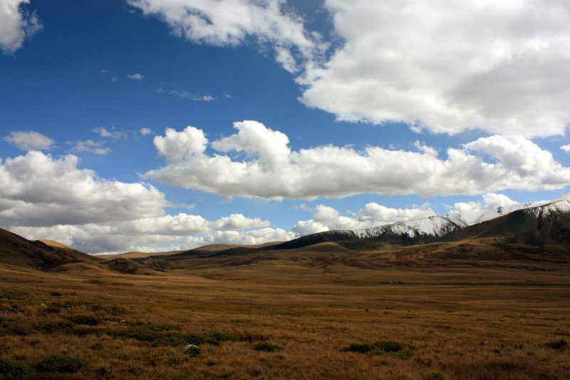 Застава на плато Укок
