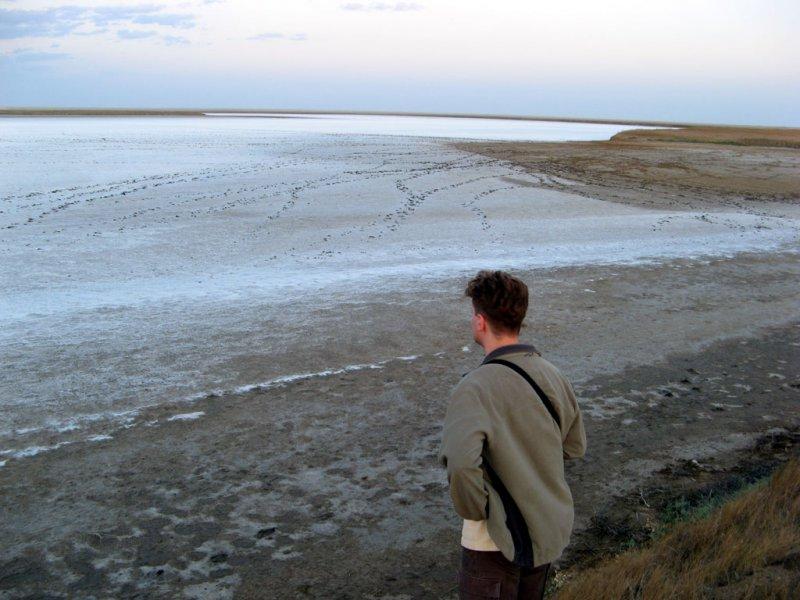 Соль до края (южная Калмыкия)