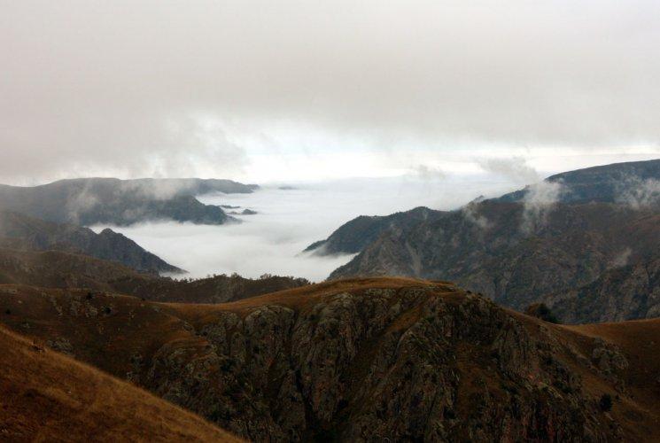 Долина в тумане